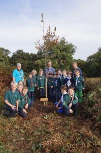 Tree planting 10-13
