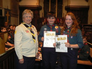 Scout Gold Award